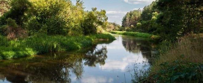 bransk-oblast-reka-iput