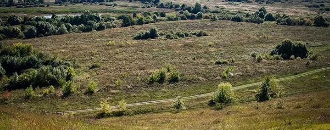 pochvi-bryanskoy-oblasti