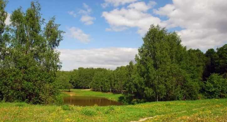 relef-bryanskoy-oblasti